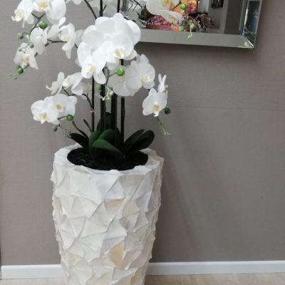 Orchidee_in_schelpenvaas_77_cm